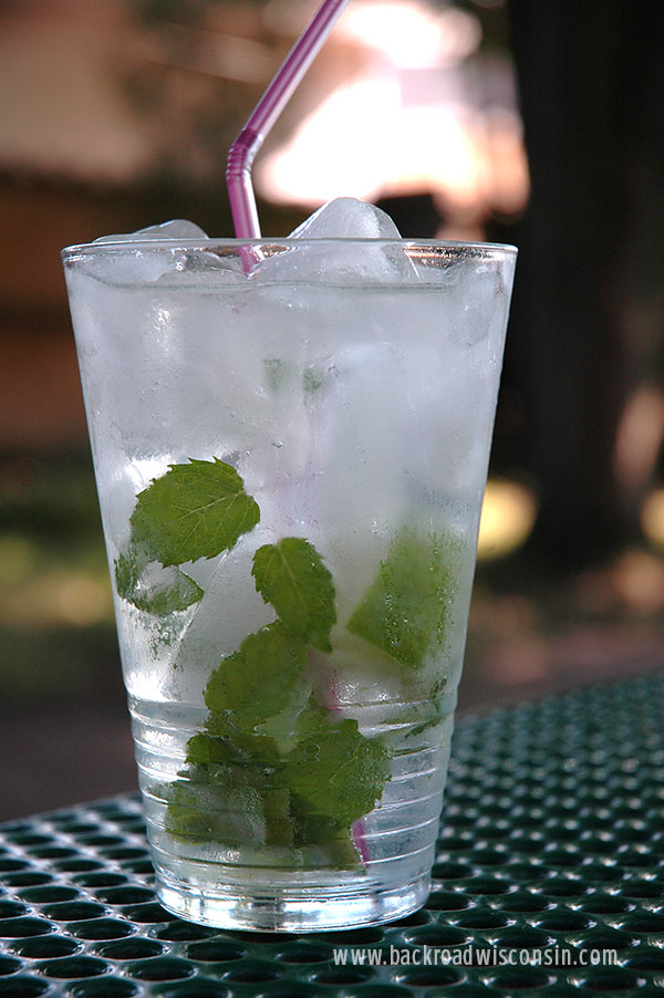 Cool Refreshing mojito